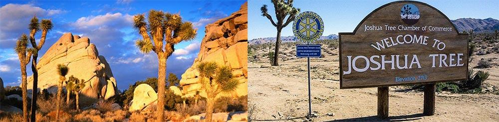 Just Add Heather - September TBD - Joshua Tree, California